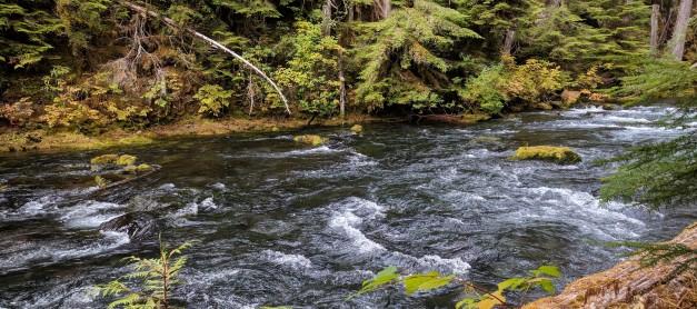 Adventures in Oregon